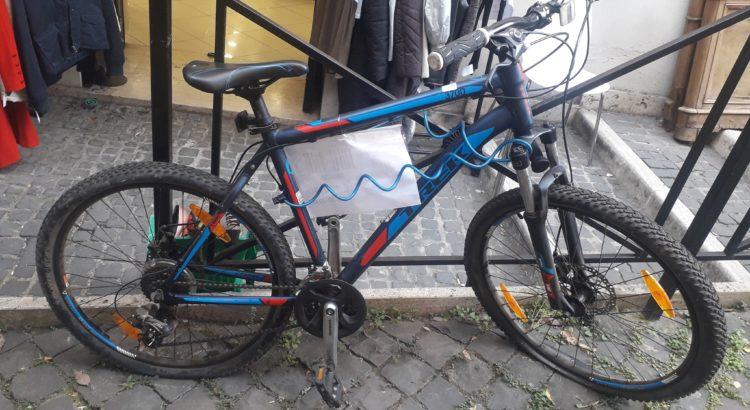 bicicletta alpha